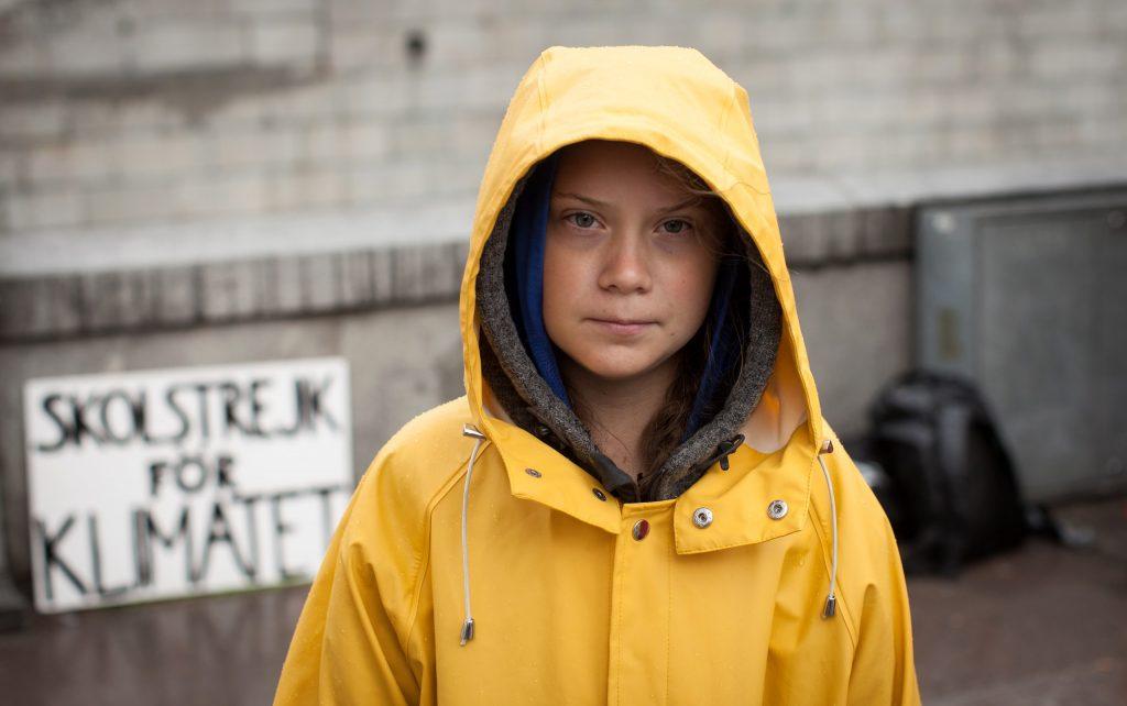 Bernard Arnault offende Greta Thunberg - Neomag.