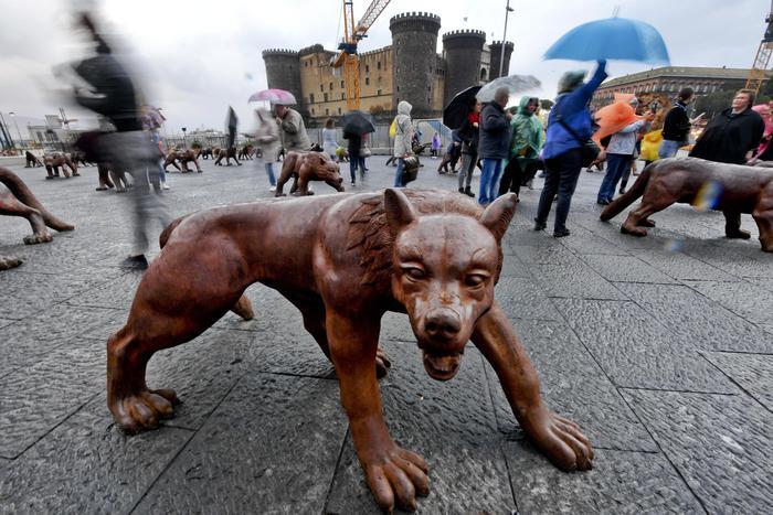 Lupi Piazza Municipio Napoli - Neomag.