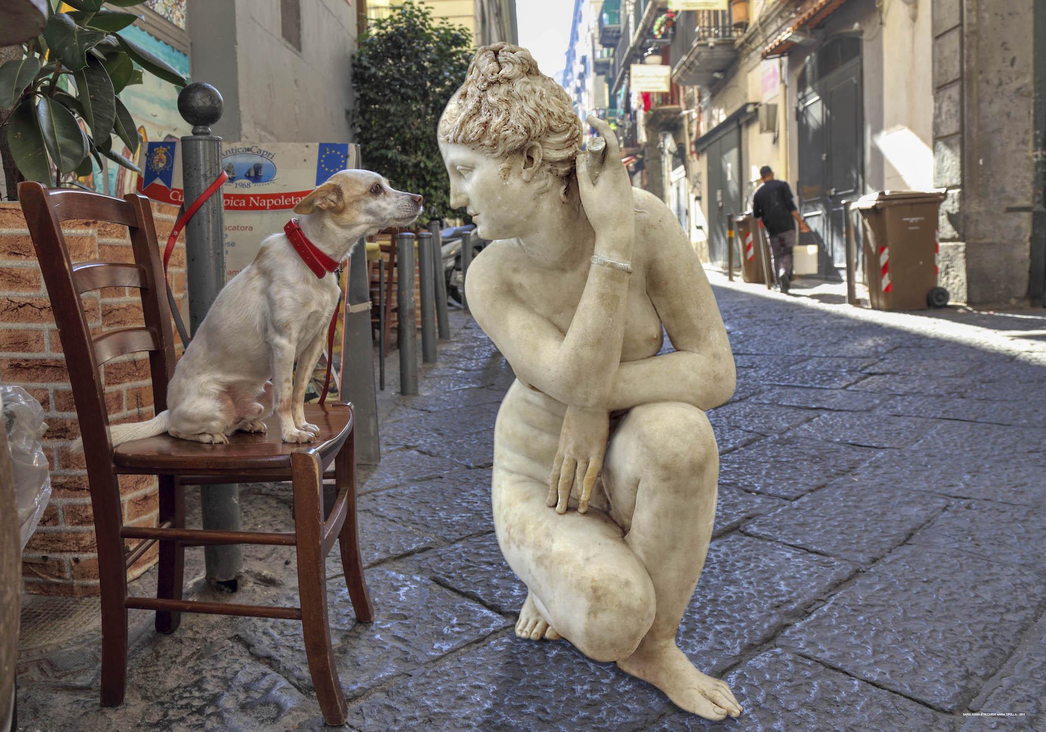 Statue nei violetti di Napoli - Neomag.