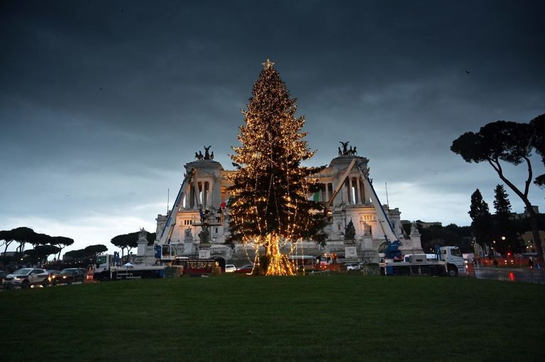 Albero di Natale a Roma - Neomag.